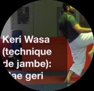 Mae geri, keri wasa, Fabrice Makos, améliorer