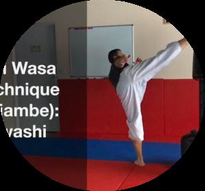 Fabrice Makos, Mawashi Geri, keri Wasa